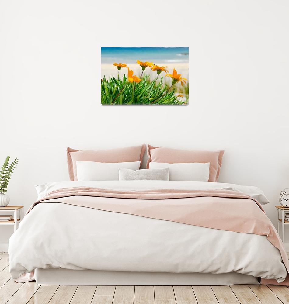 """Orange Beach Flowers""  (2011) by sardinelly"