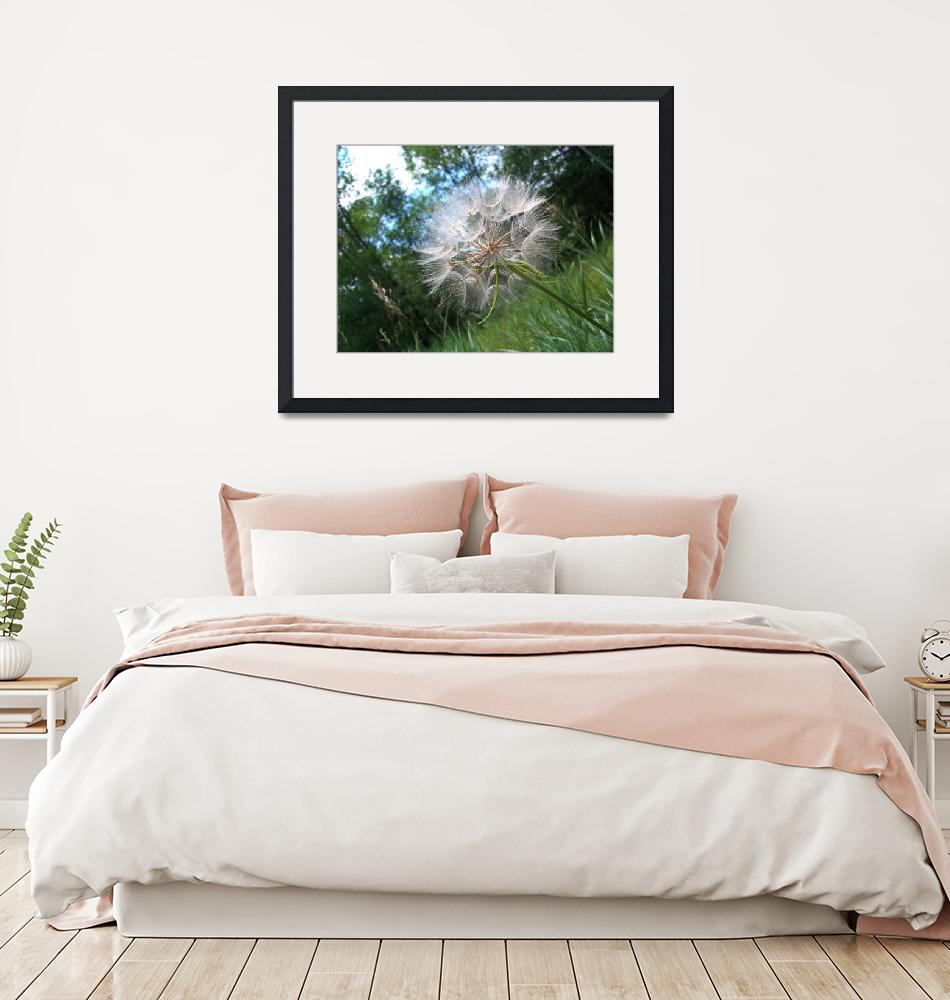"""""""Large dandelion with trees""""  (2010) by imaginativeimagery"""