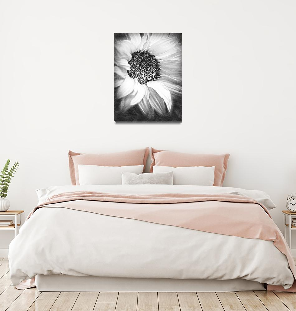 """Sunflower White And Black""  (2014) by RubinoFineArt"