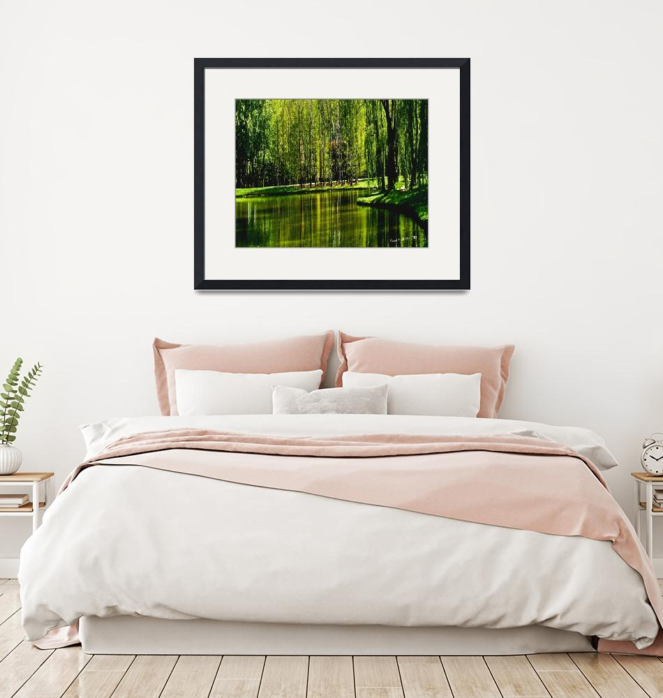 """Weeping Willow Tree Ribbons Meditation Wall Art""  (2010) by PhotographsByCarolFAustin"