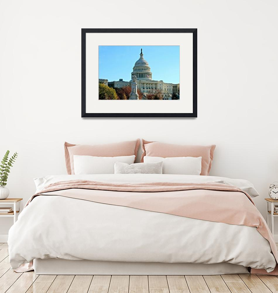 """""""Capitol_Building""""  (2013) by DMTedCo"""