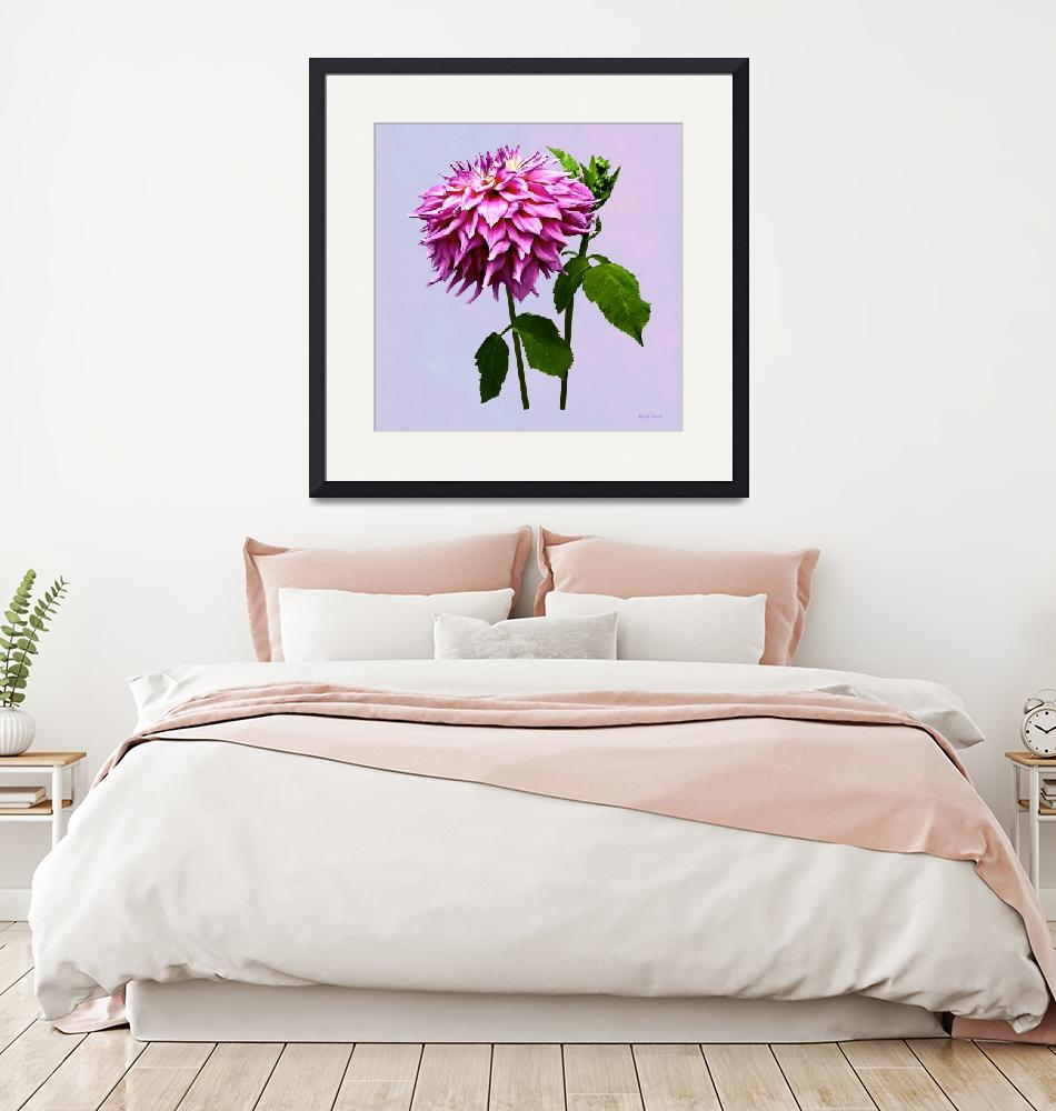 """""""One Pink Dahlia and Buds""""  by susansartgallery"""