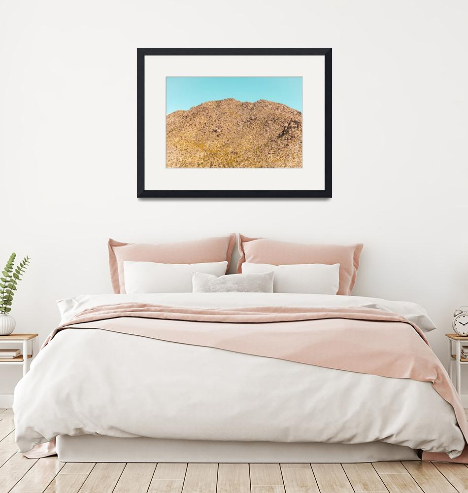 """Landscape Joshua Tree California 7342""  by amynnasser"