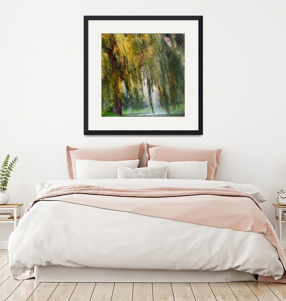 """Weeping Willow Tree Landscape Meditation Wall Art""  (2018) by PhotographsByCarolFAustin"