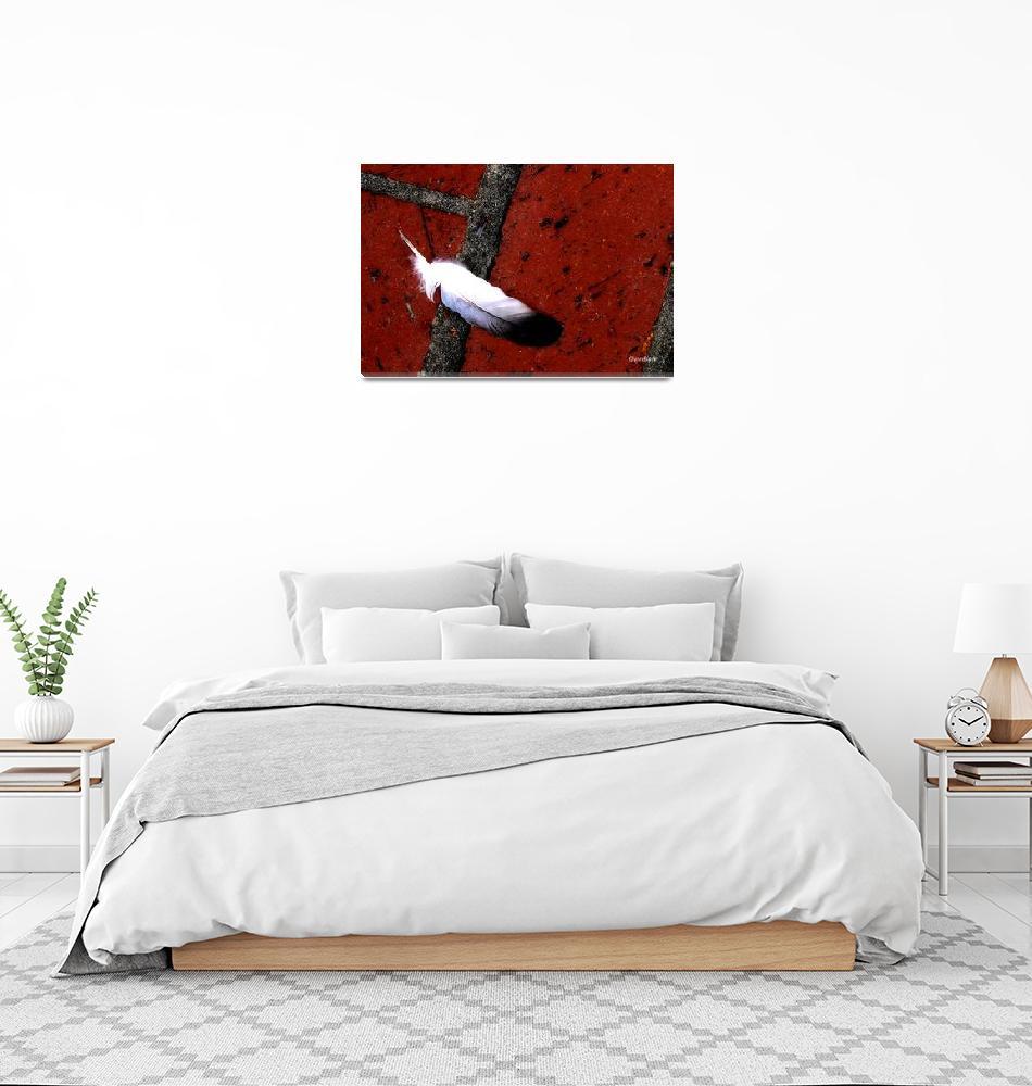 """""""Birds Atop Pier""""  by paintapixel"""