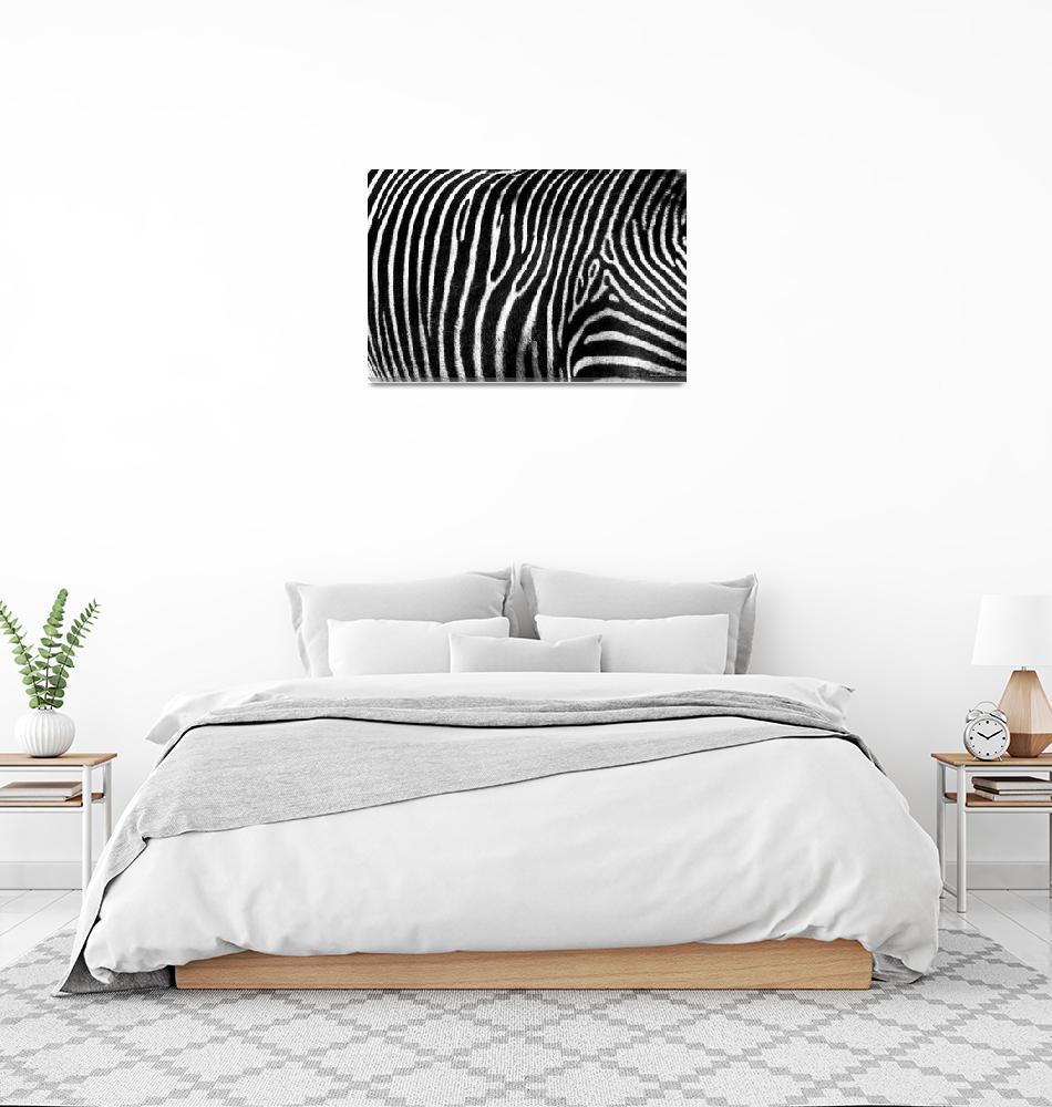 """""""Zebra Pattern""""  (2012) by DiegoRe"""