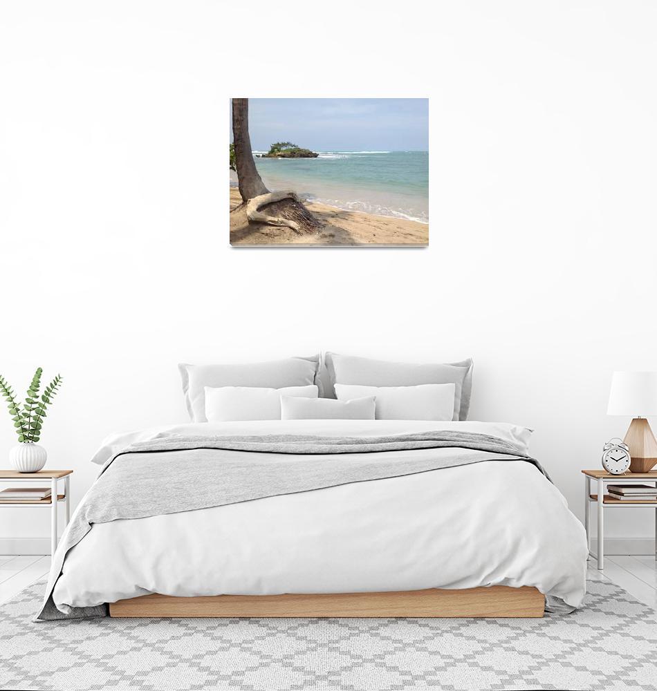 """Caribbean Driftwood Island""  (2013) by TaylorAlene"