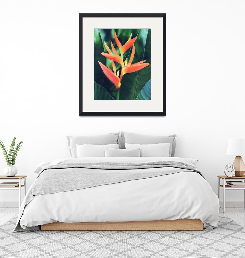 """Heliconia (False Bird of Paradise)""  (2005) by SamanthasArtStudio"