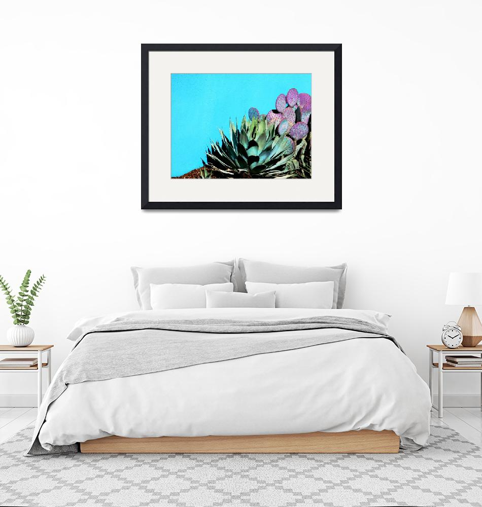 """""""Agave and Prickly Pear on Turquiose Wall P1030484""""  (2016) by almarphotography"""