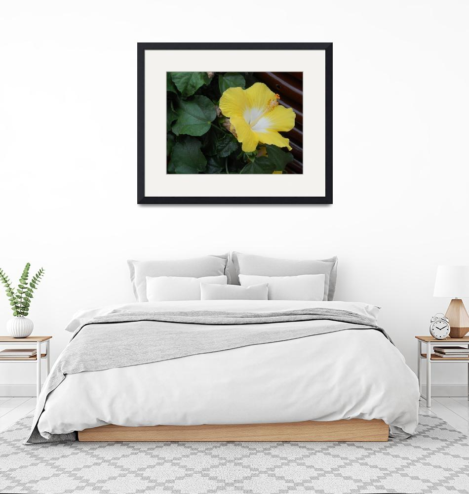 """""""Yellow Flower""""  (2013) by KYoungSeries"""