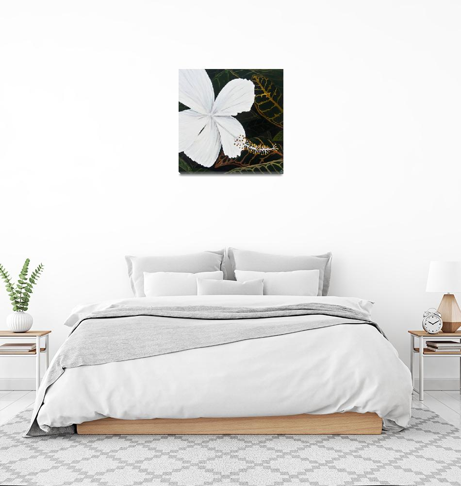 """""""White Hibiscus""""  (2013) by monicadowns"""