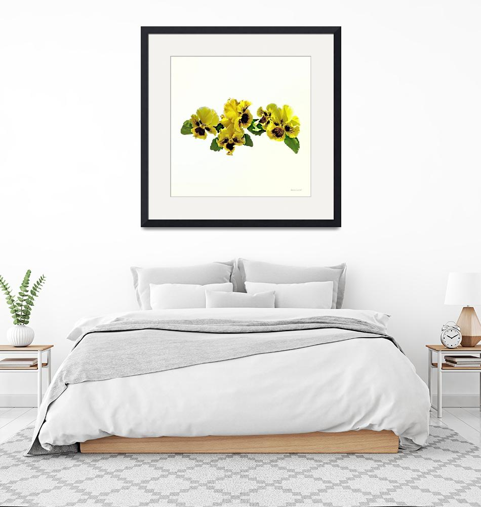 """Frilly Yellow Pansies""  by susansartgallery"