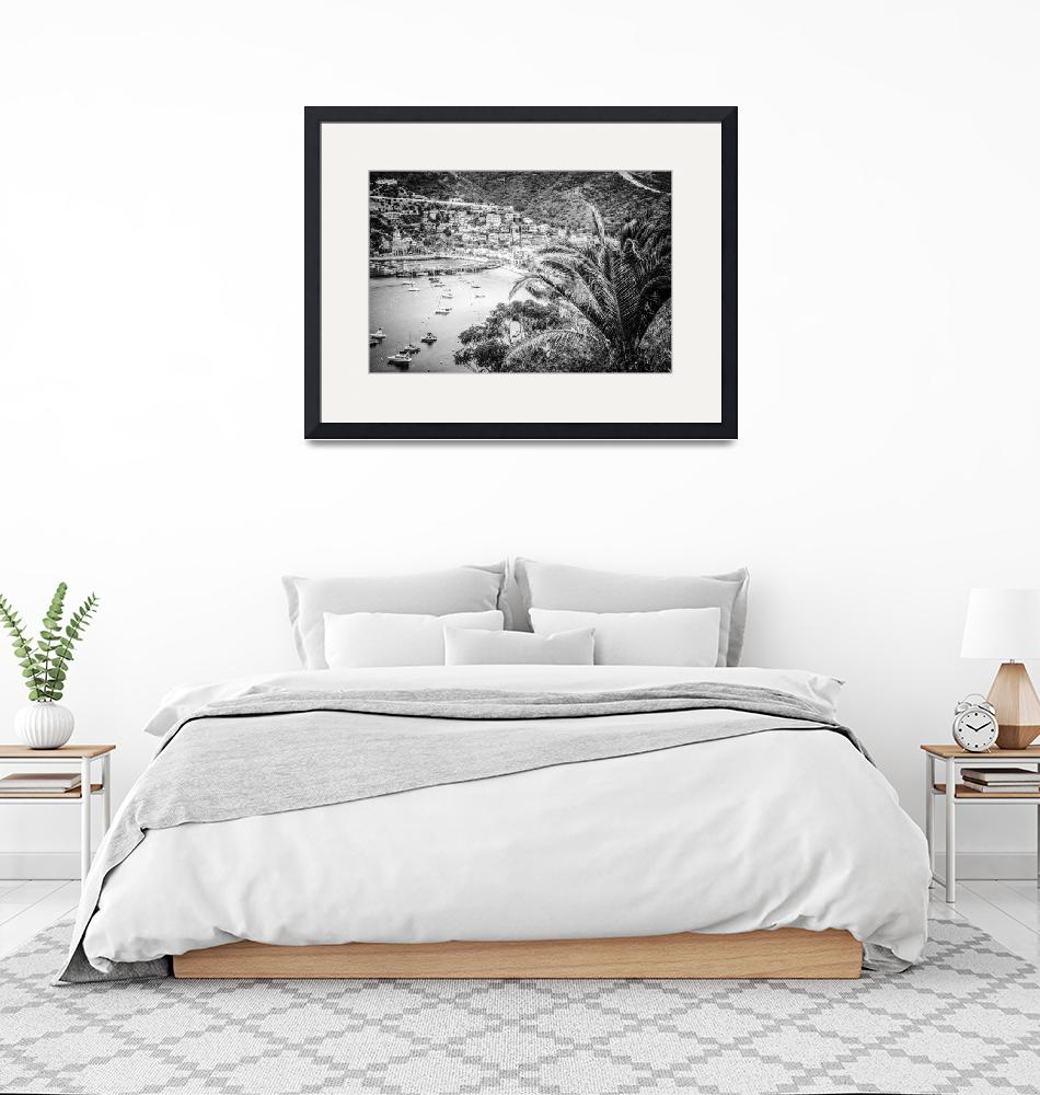 """""""Catalina Island Avalon Bay in Black and White""""  (2015) by PaulVelgos"""