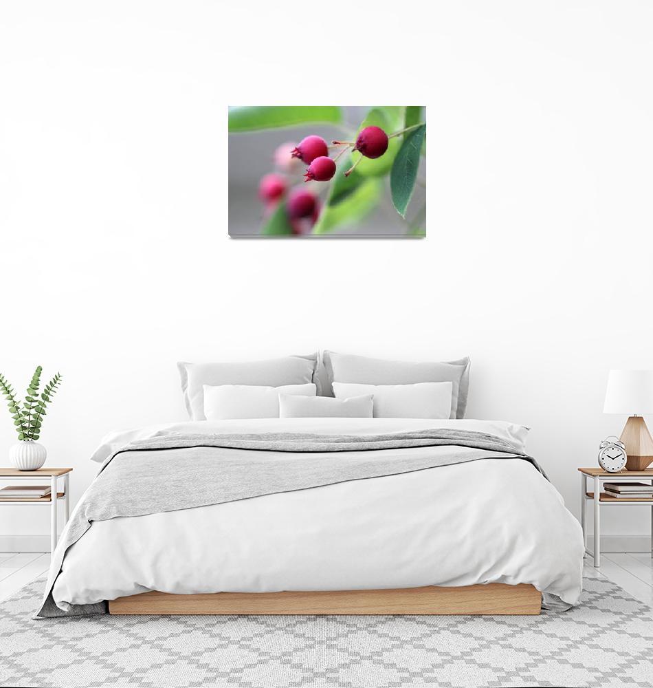 """Red Berries 2016""  (2016) by KsWorldArt"