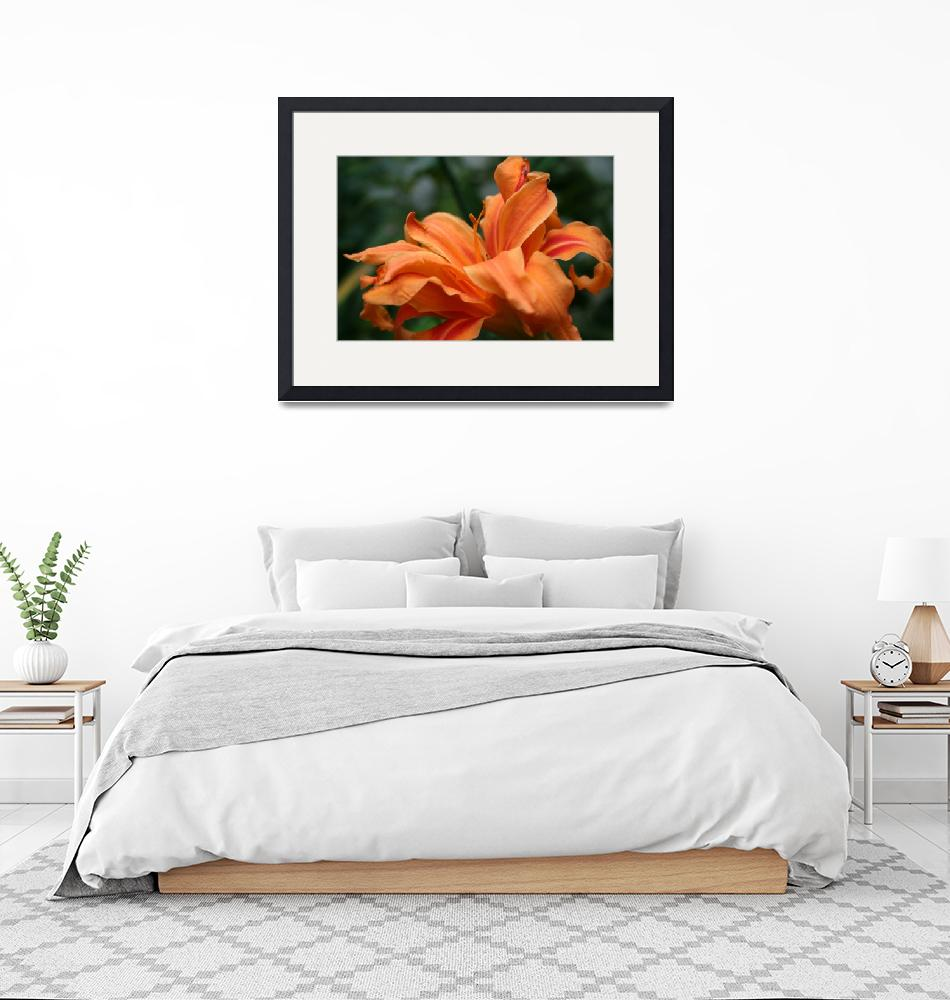 """""""Lily"""" by dreamwhisper"""