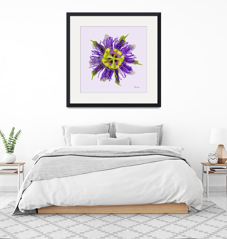 """""""Yellow Green And Violet Passion Flower 50674v""""  (2018) by Ricardos"""