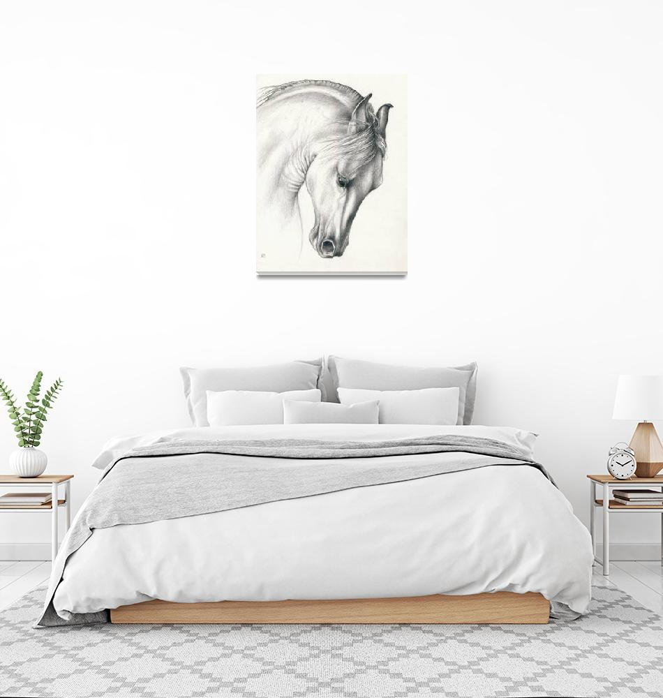 """""""Classic Andalusian Horse""""  (2014) by artdeep"""