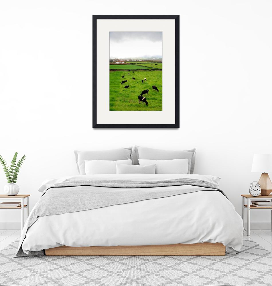 """""""Pasture and cows""""  (2011) by gavila"""