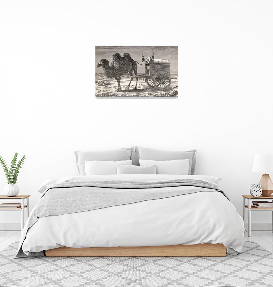 """A Camel Pulling A Carriage Across The Gobi Desert,""  by DesignPics"