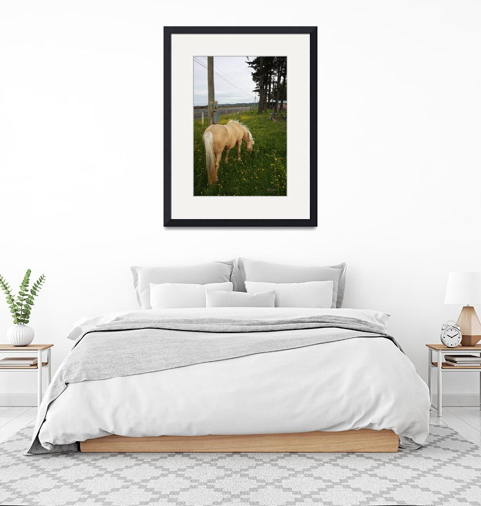 """""""Golden Horse 1""""  (2009) by dmarshall"""