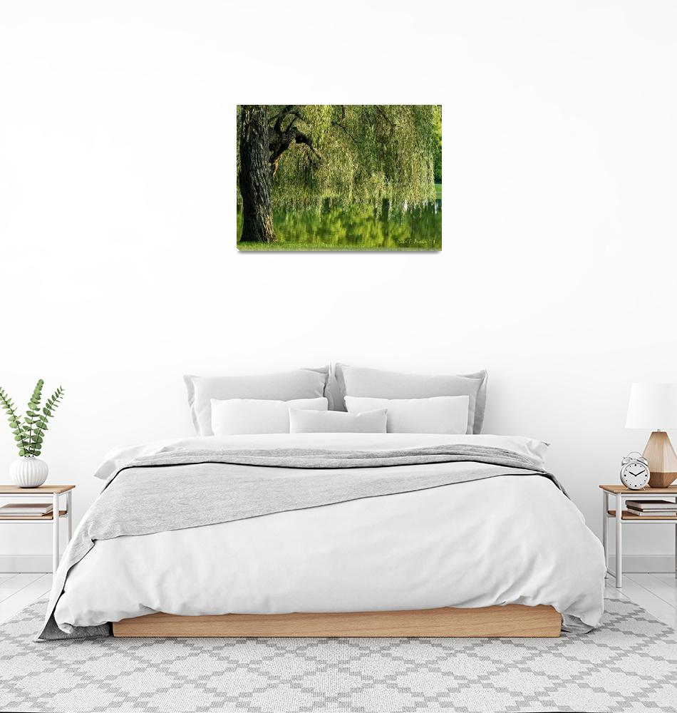 """""""Weeping Willow Tree and Pond Meditation Wall Art""""  (2011) by PhotographsByCarolFAustin"""