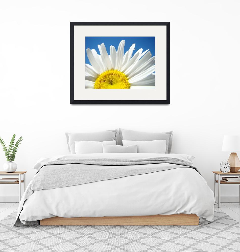 """Daisies art prints White Daisy Summer Floral""  (2010) by BasleeTroutman"