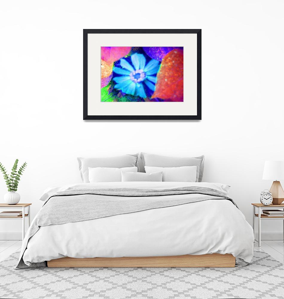"""Blue Zinnia Rests on Festive Morning Glory Leaves""  (2009) by JudyMarisa"