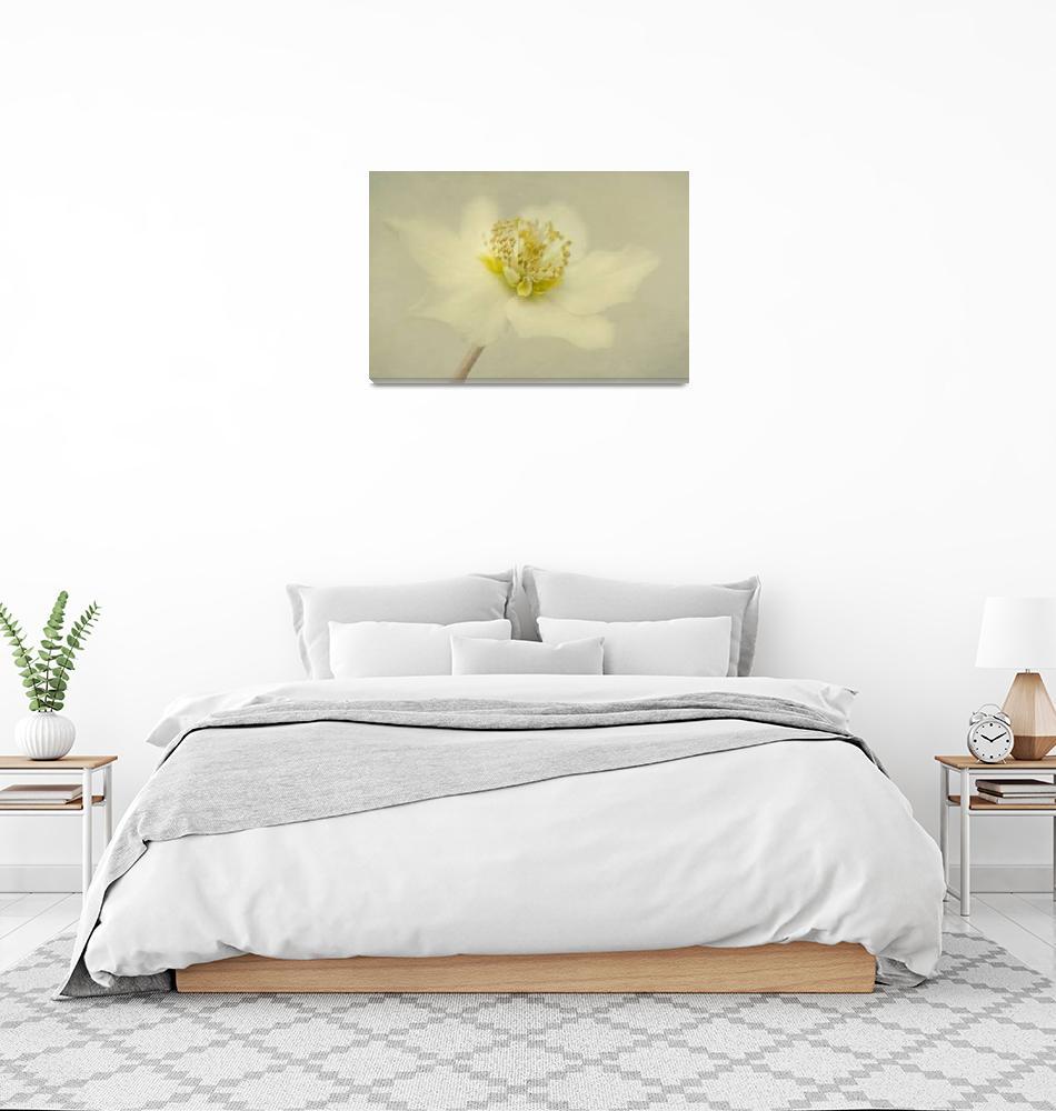 """""""vintage flower""""  by Piri"""