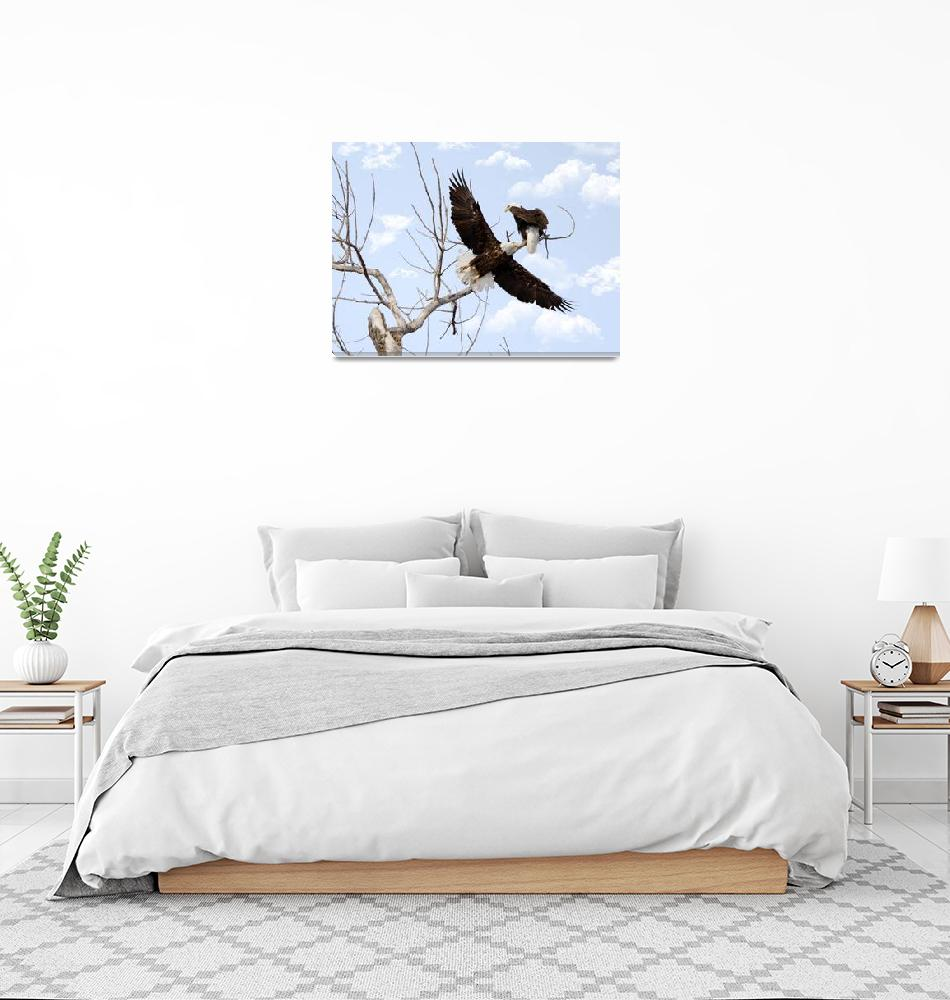 """Bald Eagle""  by cameragal"