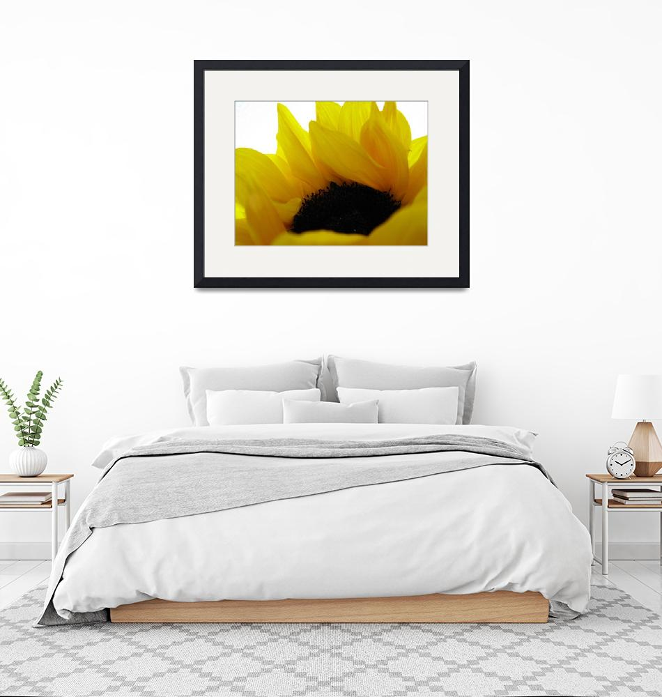 """Sunflower on Fire""  (2009) by accidental"