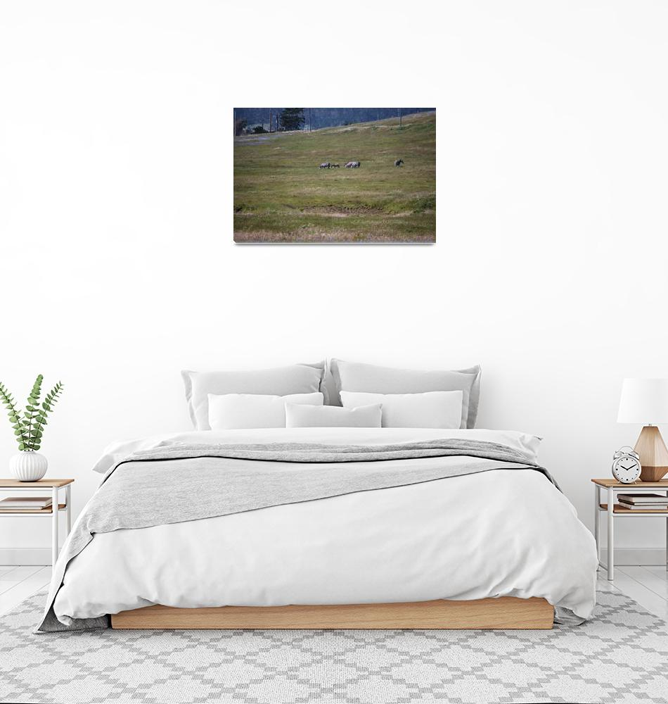 """""""Hearst Castle Zebras""""  (2010) by seewater"""