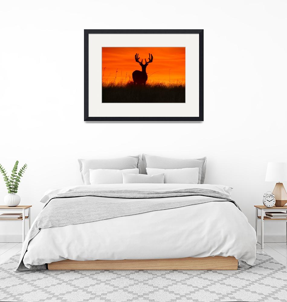 """""""Buck Silhouette at Sunset - landscape""""  by PhotographicsUnlimited"""