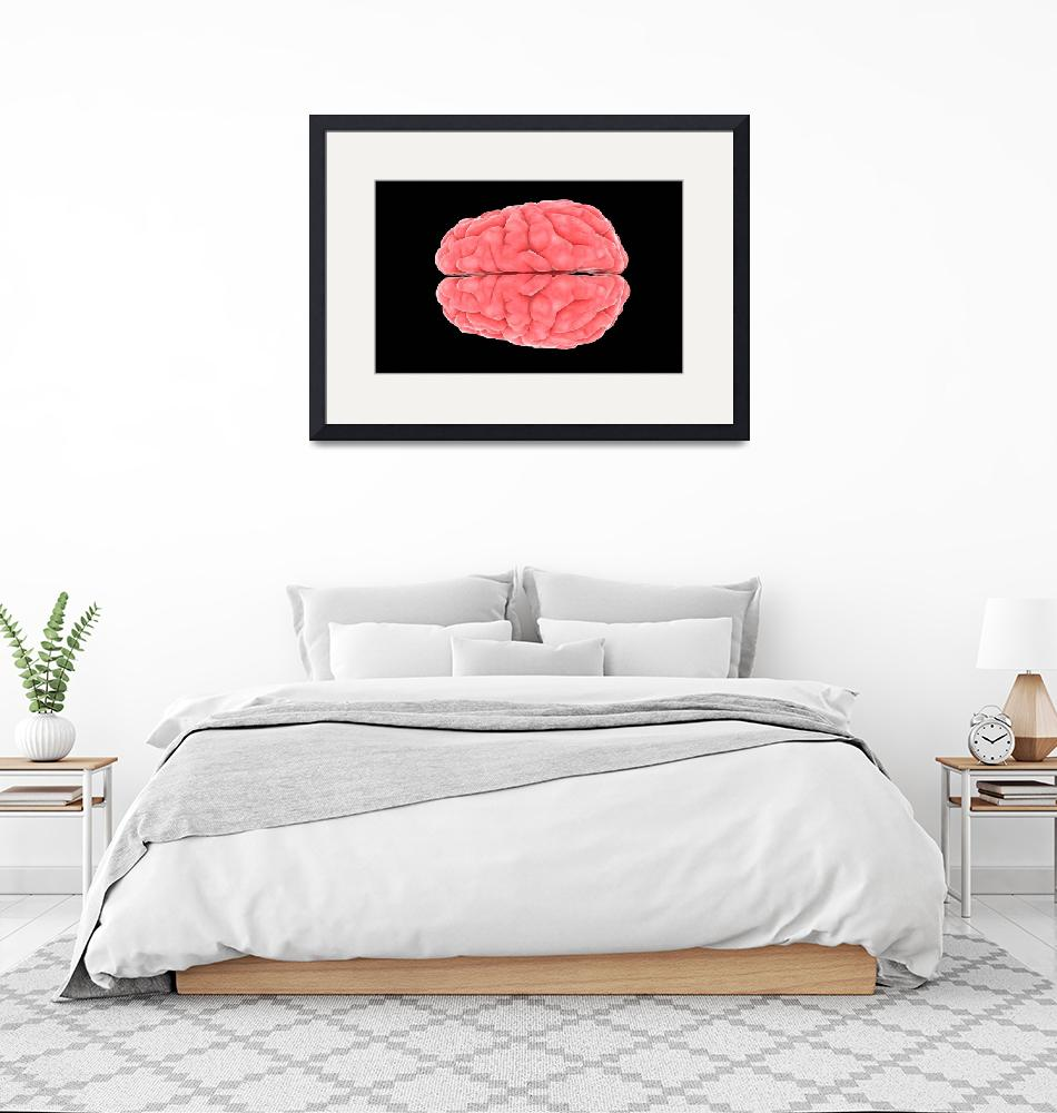 """""""Conceptual image of human brain""""  by stocktrekimages"""