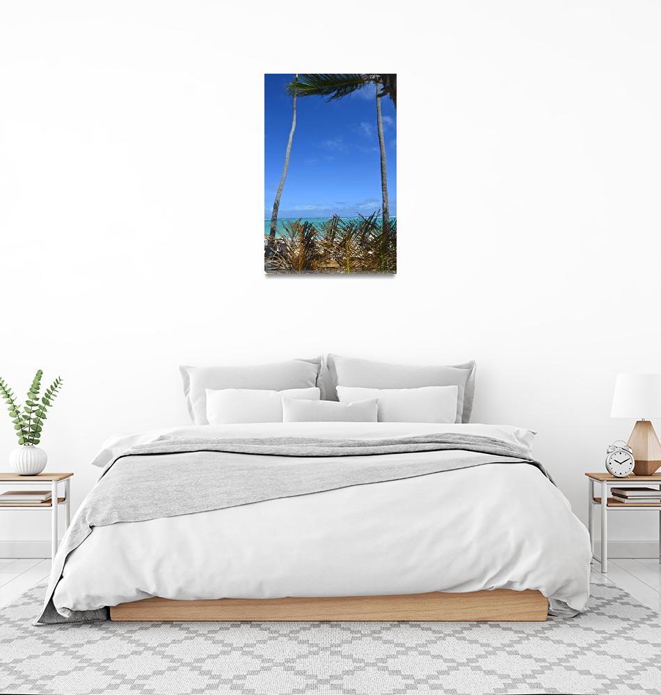 """Punta Cana Palm Wall Framed""  (2014) by JokrG"