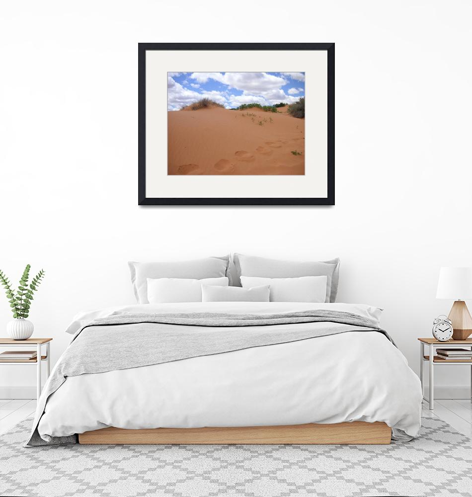 """""""Sand Dunes""""  (2007) by rbagwell"""