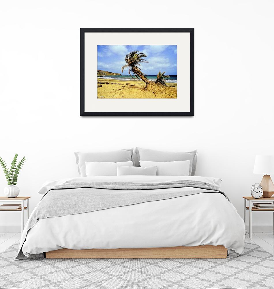 """""""Beautiful Beach, With Crooked Palmtrees""""  (1988) by JoaoPonces"""