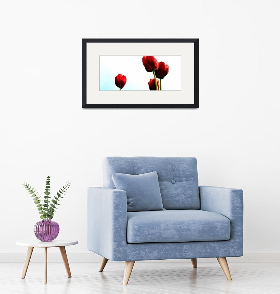 """""""Four Red Tulips""""  by Michelle1991"""