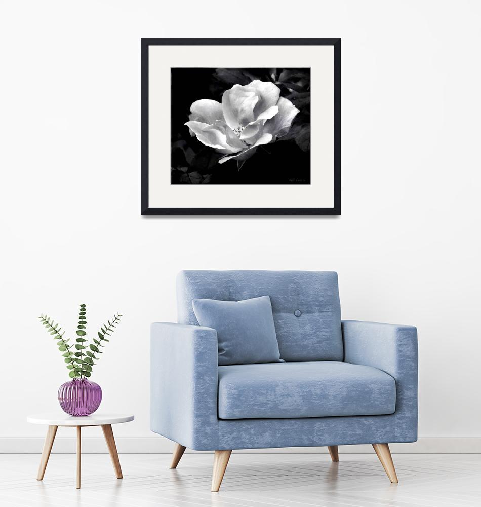 """""""Flower in black and white""""  (2017) by micspics444"""