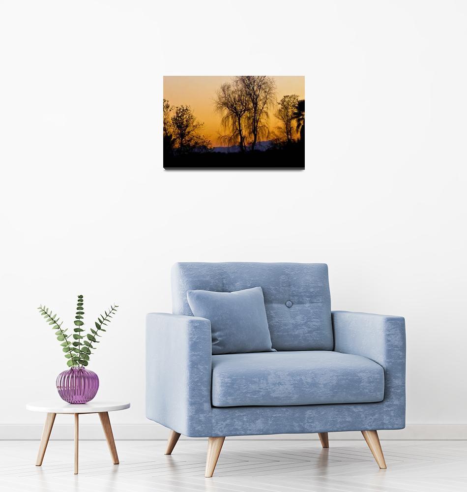 """Purple Desert Twilight-1""  (2011) by MysticLightPhotography"