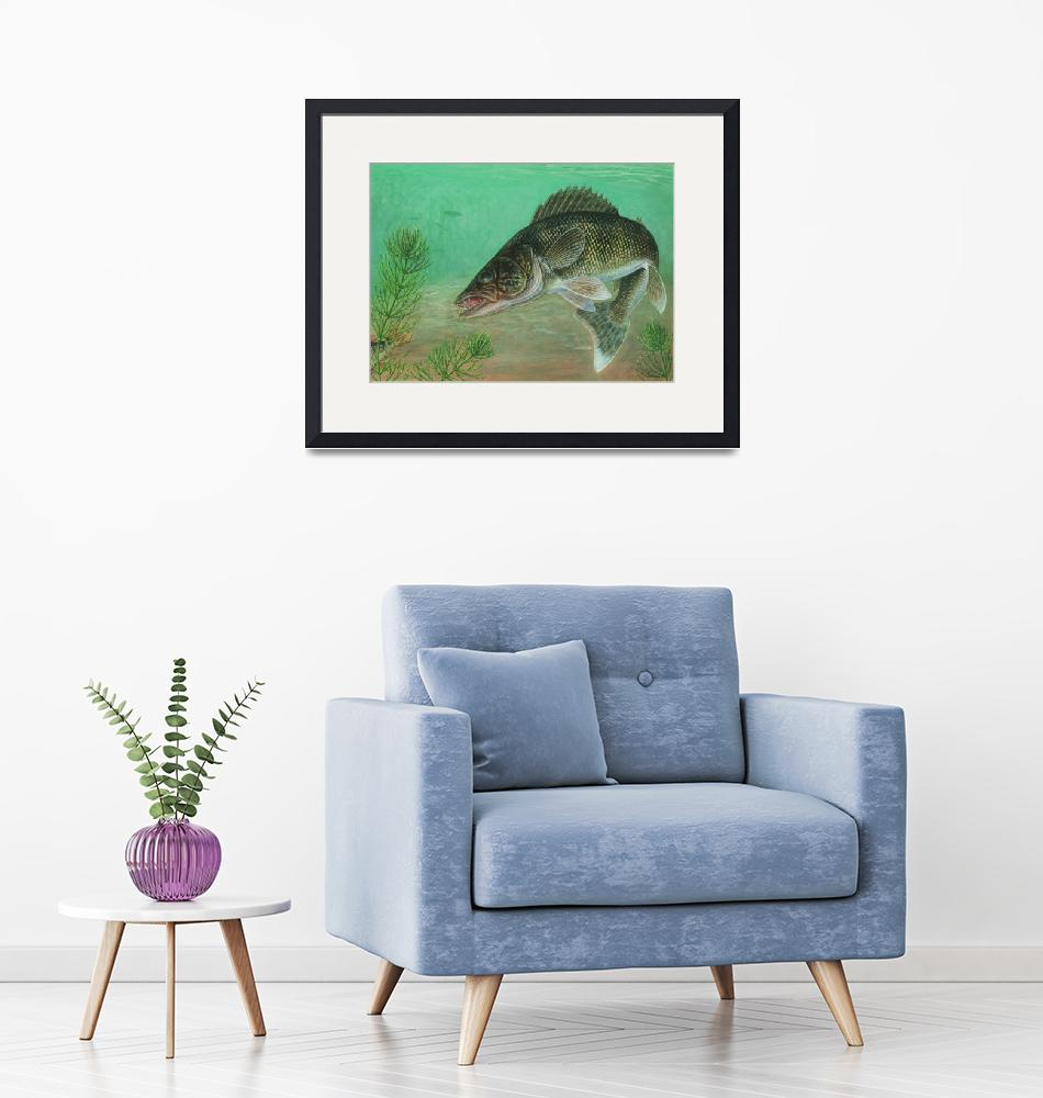 """""""Illustration of a walleye swimming""""  by stocktrekimages"""