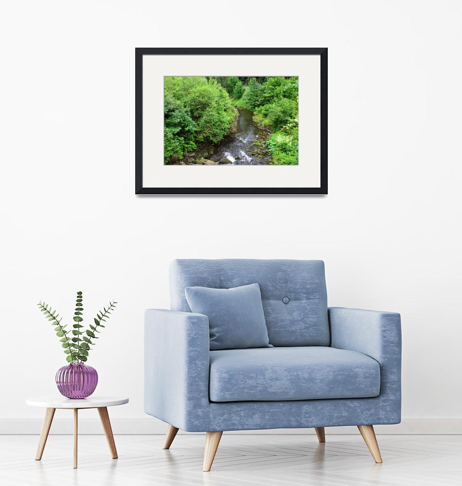 """""""The view of the forest and stream""""  (2019) by danieltoryfter"""