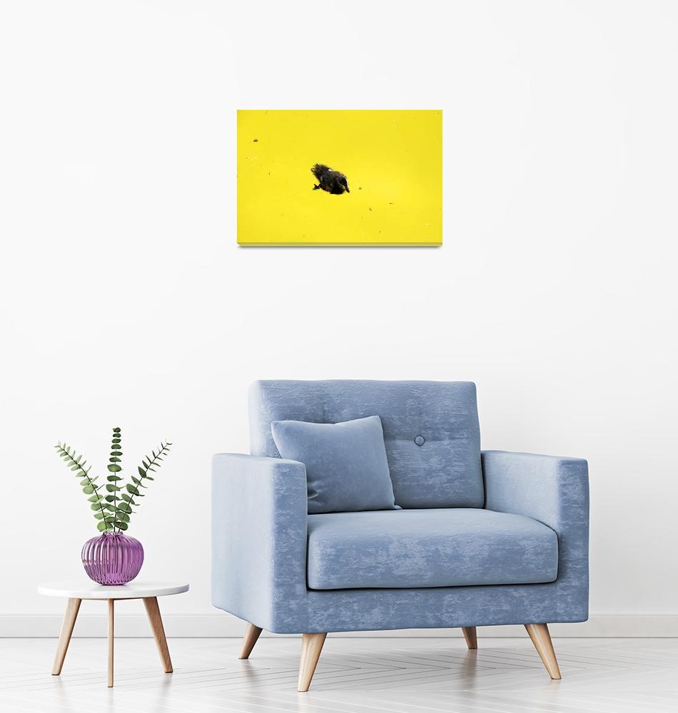 """Yellow""  by TerraformDesign"