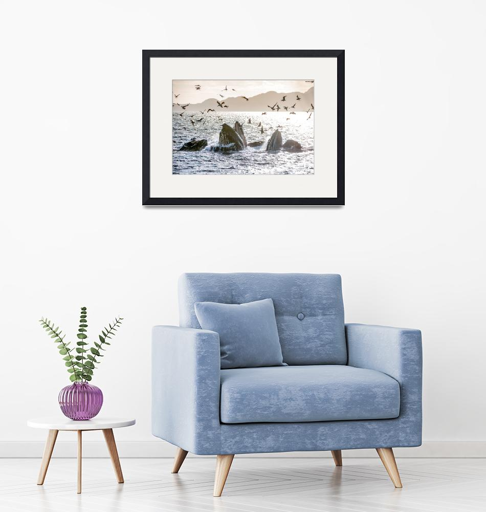 """""""Winter Collection 2017-2018--2""""  by PacificWild"""
