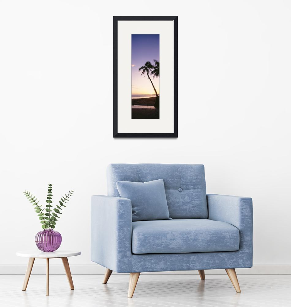 """""""Fiji, Palm Trees Silhouetted On Beach At Sunset""""  by DesignPics"""