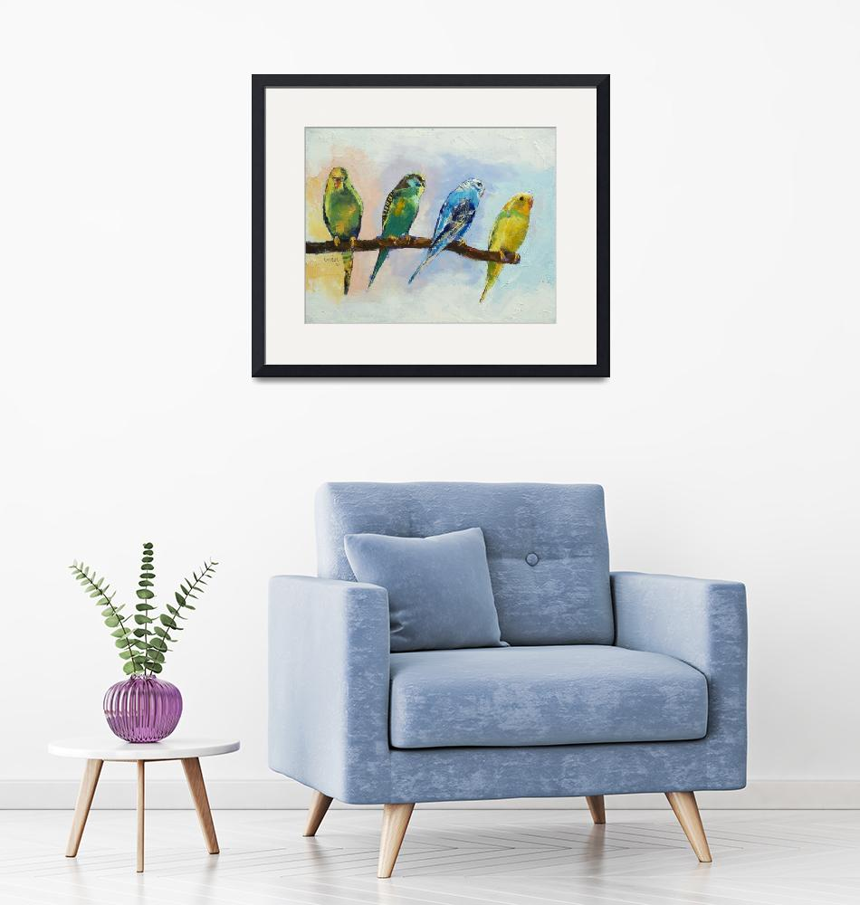 """""""Four Parakeets""""  by creese"""