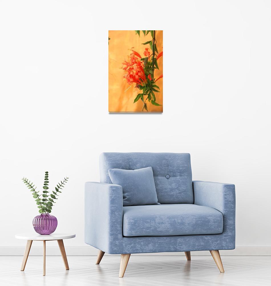 """Orange Flowers Next to a Wall""  (2015) by rhamm"