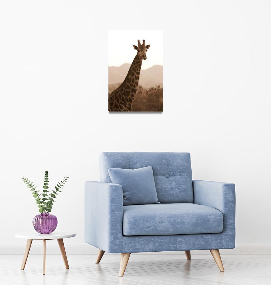 """Giraffe"" (2010) by Permen_Mata"
