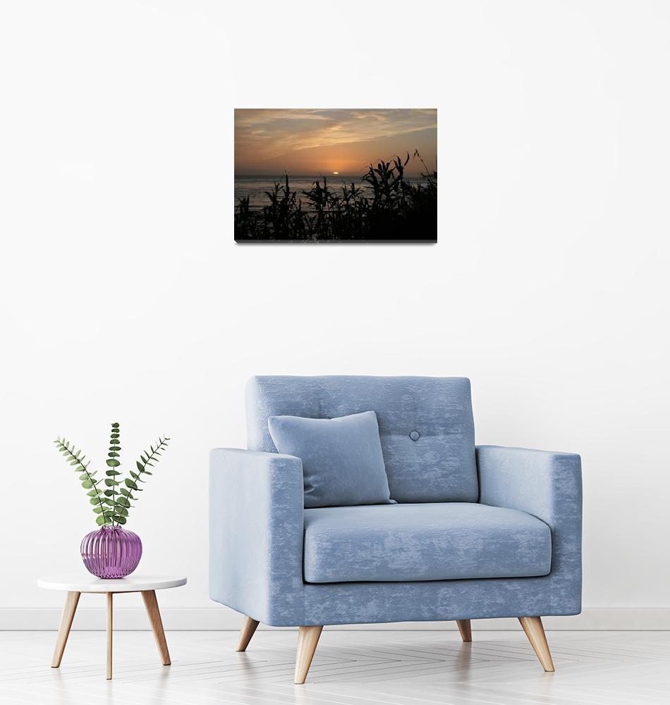 """Sunrise Wainui Beach December 2010""  (2010) by BestGiftofEveryDay"