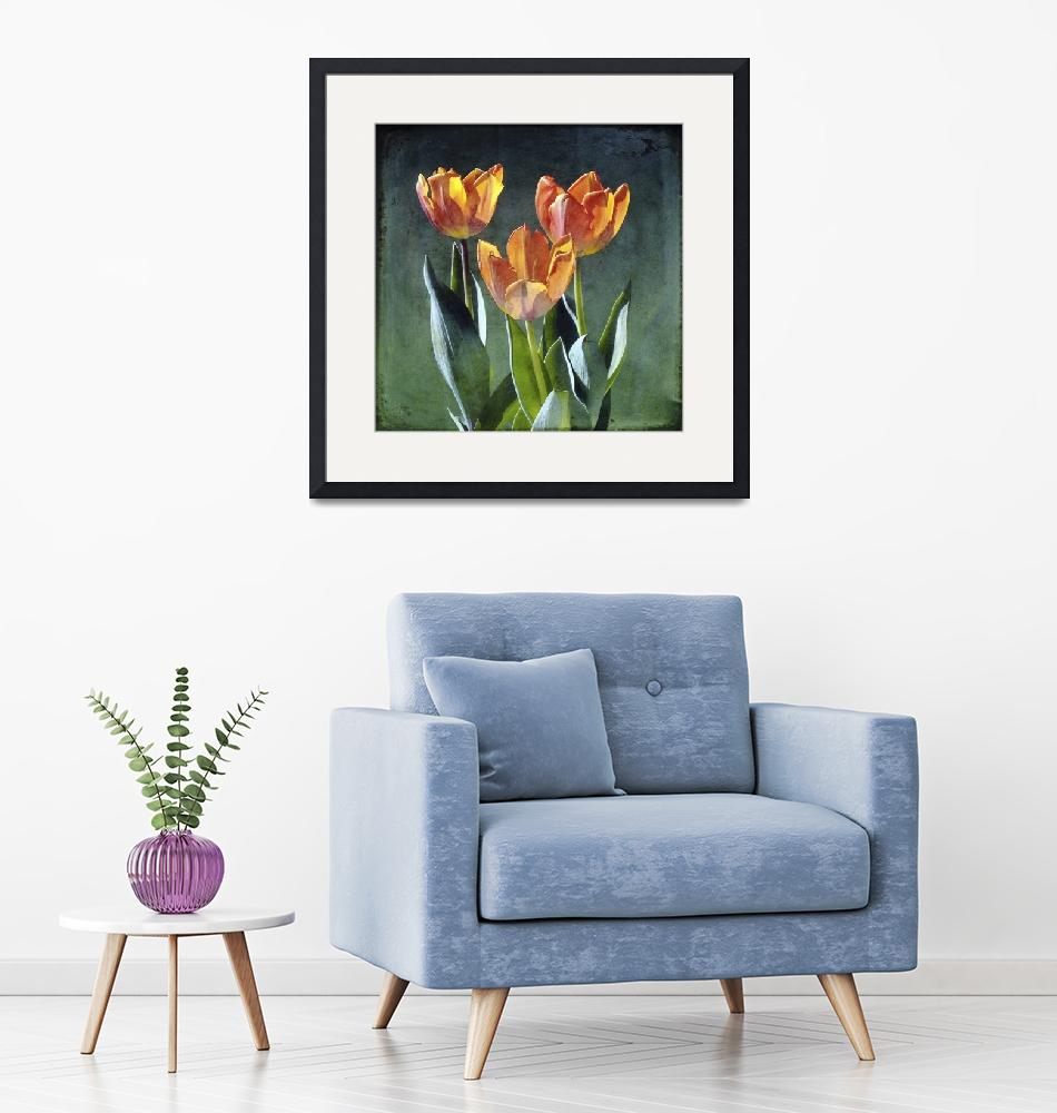 """""""Tulips""""  (2015) by SkipNall"""