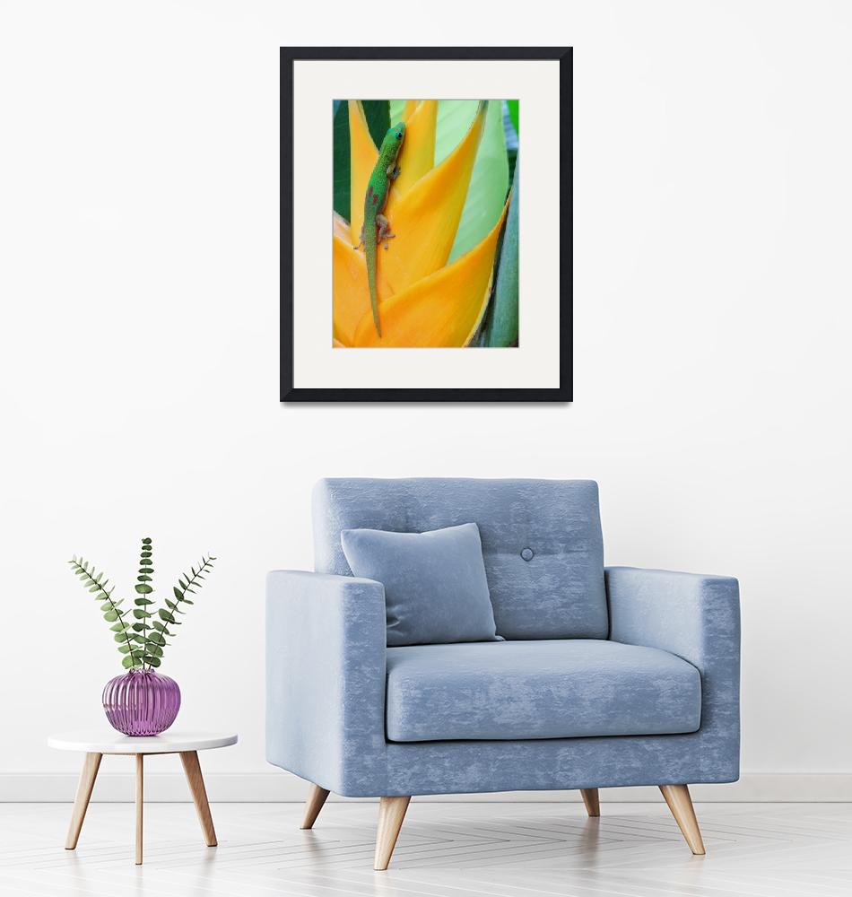 """""""Gold Dust Gecko and Heliconia""""  (2016) by joeyartist"""